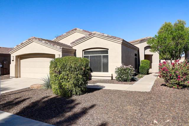 2120 E Fawn Drive, Phoenix, AZ 85042 (MLS #6002399) :: The W Group