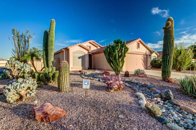 14027 N 133rd Drive, Surprise, AZ 85379 (MLS #6002491) :: Revelation Real Estate