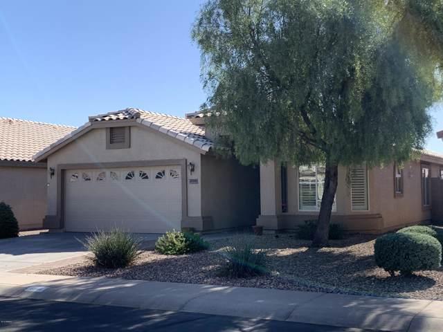 23101 W Antelope Trail, Buckeye, AZ 85326 (MLS #6002503) :: Dave Fernandez Team | HomeSmart