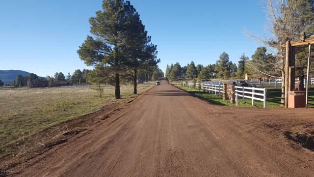 213 High Point Drive, Mormon Lake, AZ 86038 (MLS #6002569) :: neXGen Real Estate