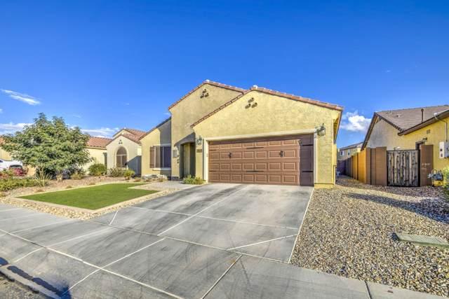 3381 N San Marin Drive, Florence, AZ 85132 (MLS #6002869) :: Selling AZ Homes Team