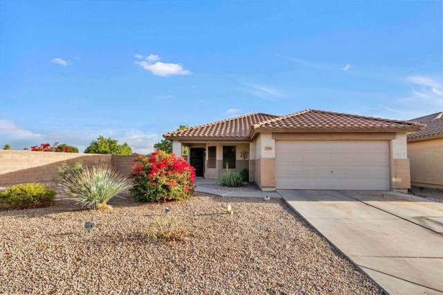 1244 W Mesquite Tree Lane, San Tan Valley, AZ 85143 (MLS #6002923) :: The Laughton Team