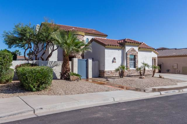 14402 W Monte Vista Road, Goodyear, AZ 85395 (MLS #6003000) :: Riddle Realty Group - Keller Williams Arizona Realty