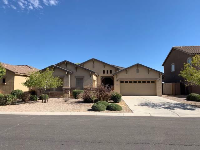 24461 N Plum Road, Florence, AZ 85132 (MLS #6003005) :: Selling AZ Homes Team