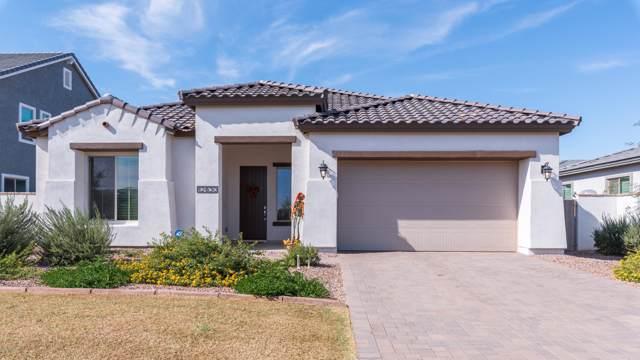 12830 N 145TH Avenue, Surprise, AZ 85379 (MLS #6003009) :: Long Realty West Valley