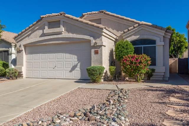 20419 N 31ST Place, Phoenix, AZ 85050 (MLS #6003124) :: Brett Tanner Home Selling Team