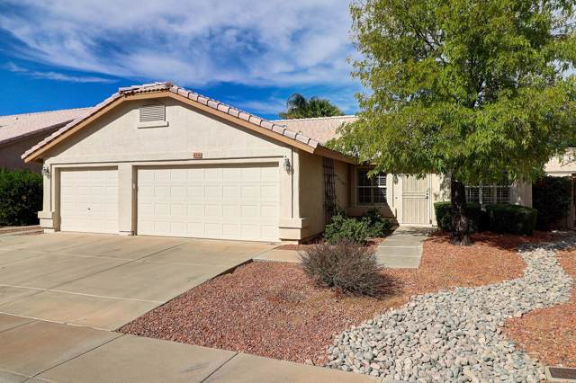 4336 E Muriel Drive, Phoenix, AZ 85032 (MLS #6003125) :: Revelation Real Estate