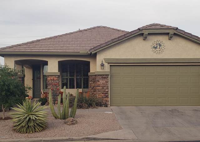 398 W Twin Peaks Parkway, San Tan Valley, AZ 85143 (MLS #6003145) :: The Property Partners at eXp Realty