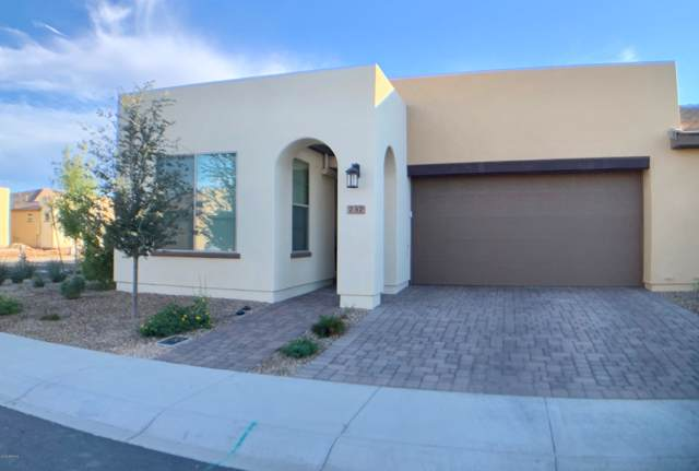 737 E Myrtle Pass, San Tan Valley, AZ 85140 (MLS #6003161) :: The Property Partners at eXp Realty