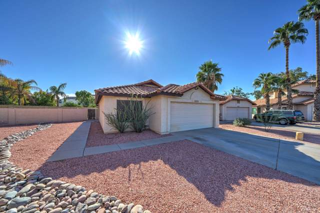 1353 S Quinn, Mesa, AZ 85206 (MLS #6003213) :: Revelation Real Estate