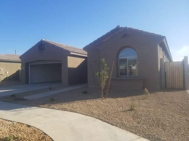 23079 S 231ST Place, Queen Creek, AZ 85142 (MLS #6003220) :: Brett Tanner Home Selling Team