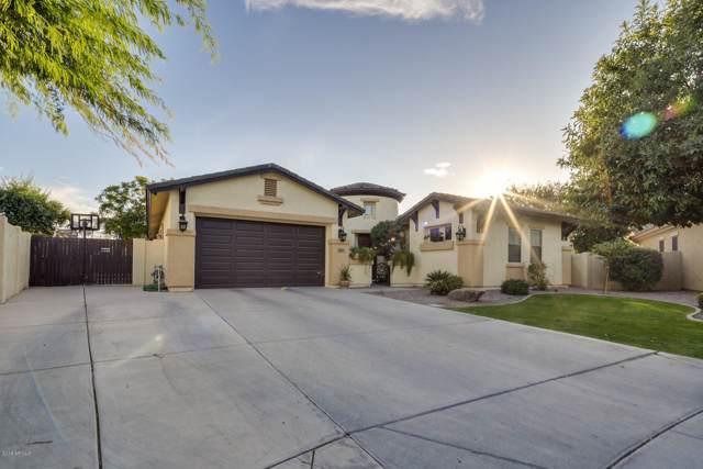 3359 E Goldfinch Way, Chandler, AZ 85286 (MLS #6003230) :: Riddle Realty Group - Keller Williams Arizona Realty