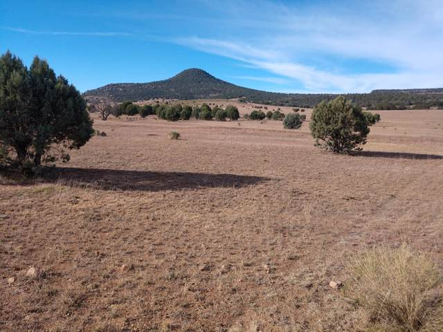150 S Dutchman Trail, Young, AZ 85554 (MLS #6003270) :: Howe Realty
