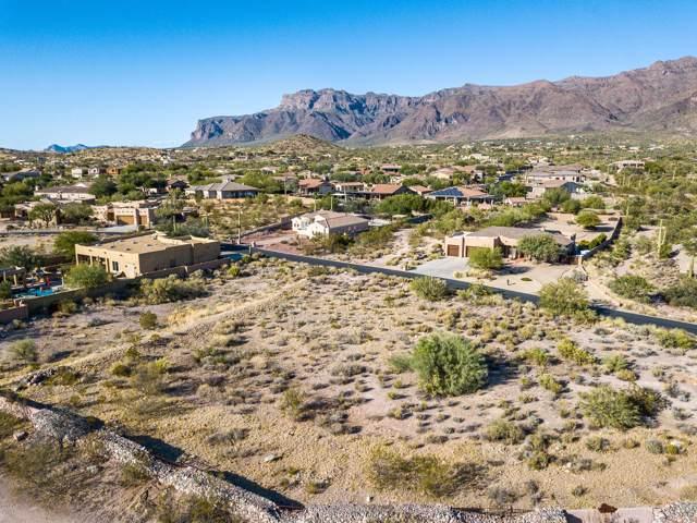 10631 E Walking Stick Way, Gold Canyon, AZ 85118 (MLS #6003346) :: The Kenny Klaus Team