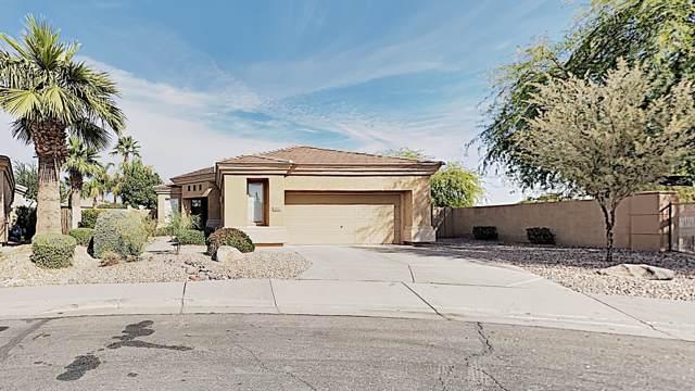 822 W Raven Drive, Chandler, AZ 85286 (MLS #6003361) :: Brett Tanner Home Selling Team