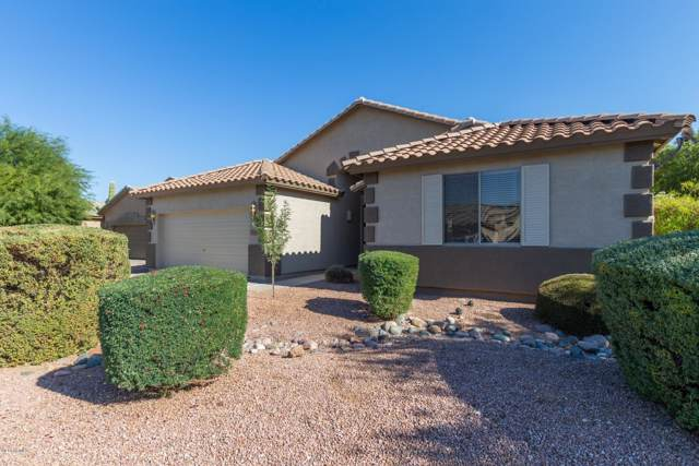 405 S 119TH Avenue, Avondale, AZ 85323 (MLS #6003493) :: RE/MAX Desert Showcase