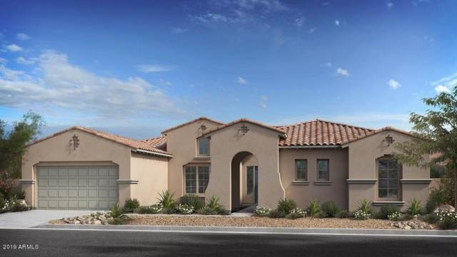 3648 E Fargo Street, Mesa, AZ 85205 (MLS #6003537) :: Selling AZ Homes Team