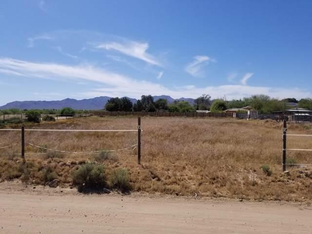 17500 W Cheryl Drive, Waddell, AZ 85355 (MLS #6003599) :: Devor Real Estate Associates