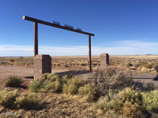 River Meadows Ranch Lot #118, Concho, AZ 85924 (MLS #6003612) :: Lifestyle Partners Team