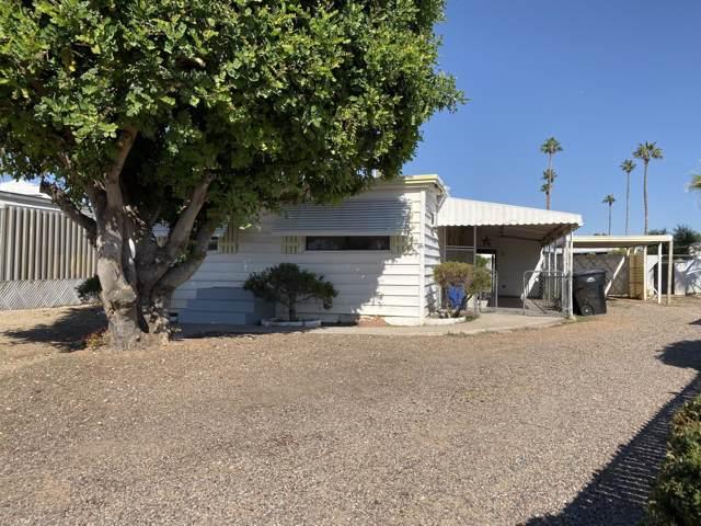 2748 E Birchwood Avenue, Mesa, AZ 85204 (MLS #6003616) :: Selling AZ Homes Team
