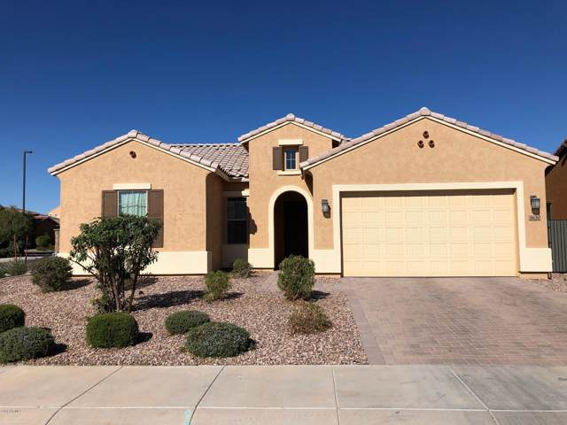 3630 E Donato Drive, Gilbert, AZ 85298 (MLS #6003631) :: Brett Tanner Home Selling Team