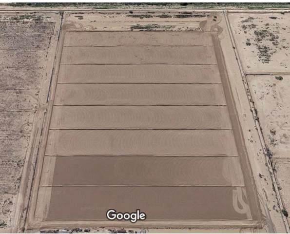 0 S Huddson, Eloy, AZ 85131 (MLS #6003869) :: Yost Realty Group at RE/MAX Casa Grande