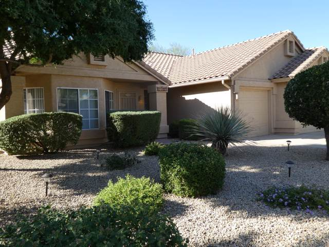28822 N 45TH Place, Cave Creek, AZ 85331 (MLS #6003893) :: RE/MAX Desert Showcase