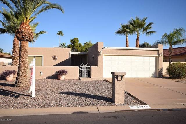 26025 S Brentwood Drive, Sun Lakes, AZ 85248 (MLS #6003971) :: The W Group
