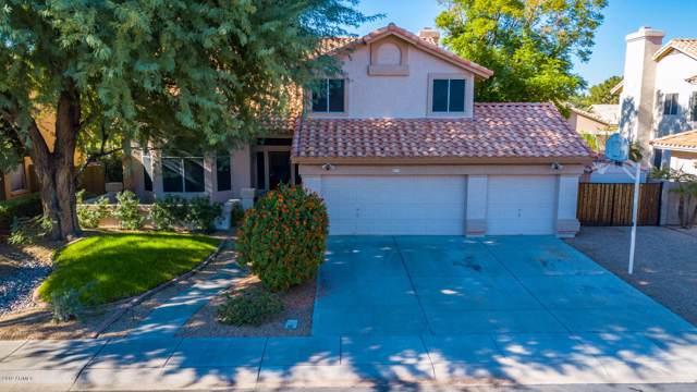 524 N Saguaro Street, Chandler, AZ 85224 (MLS #6004027) :: Lifestyle Partners Team