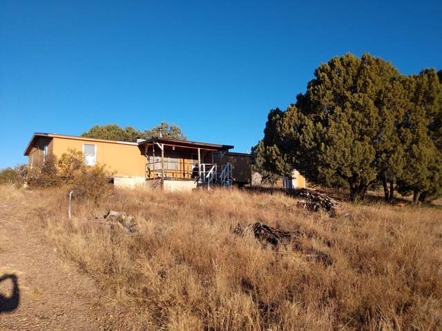 438 S Rolling Hills Road, Young, AZ 85554 (MLS #6004075) :: Kepple Real Estate Group
