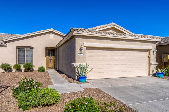 20427 N Lemon Drop Drive, Maricopa, AZ 85138 (MLS #6004089) :: The Kenny Klaus Team