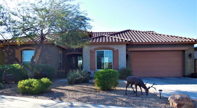 47882 N Navidad Court, Gold Canyon, AZ 85118 (MLS #6004115) :: Cindy & Co at My Home Group