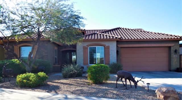 47882 N Navidad Court, Gold Canyon, AZ 85118 (MLS #6004115) :: Revelation Real Estate