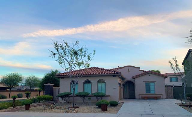 15657 W Devonshire Avenue, Goodyear, AZ 85395 (MLS #6004127) :: Brett Tanner Home Selling Team