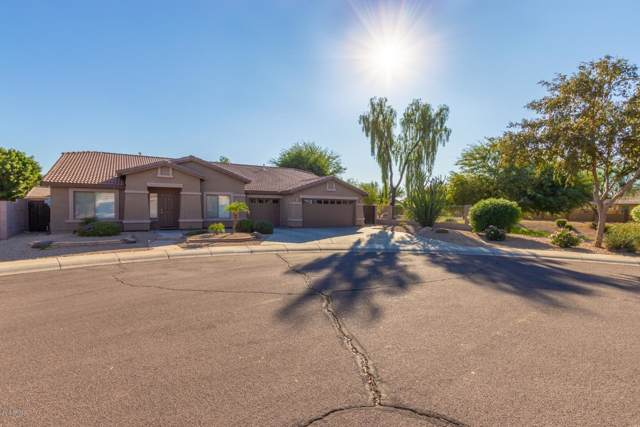 8877 W Runion Drive, Peoria, AZ 85382 (MLS #6004200) :: Riddle Realty Group - Keller Williams Arizona Realty