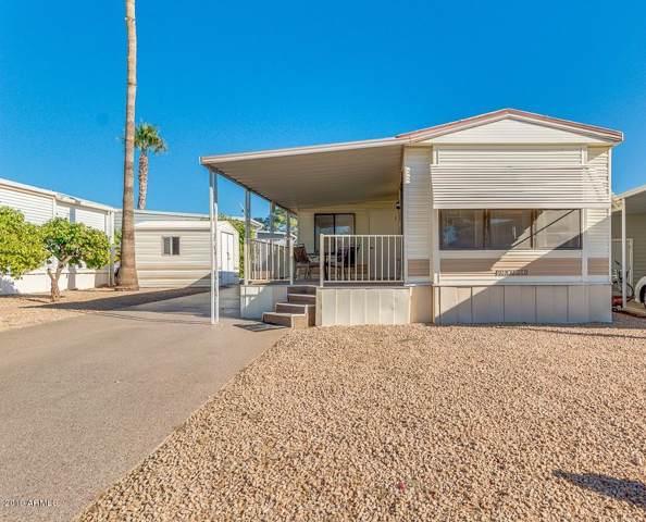 17200 W Bell Road #247, Surprise, AZ 85374 (MLS #6004311) :: Revelation Real Estate