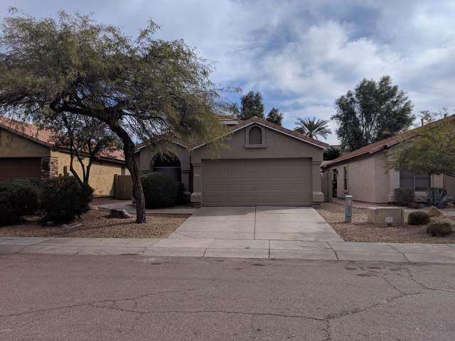 21815 N 48TH Street, Phoenix, AZ 85054 (MLS #6004359) :: The Property Partners at eXp Realty