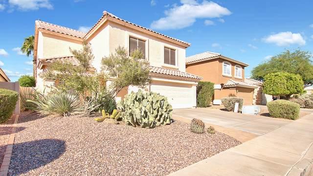 4670 W Binner Drive, Chandler, AZ 85226 (MLS #6004451) :: Scott Gaertner Group