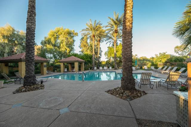 4925 E Desert Cove Avenue #135, Scottsdale, AZ 85254 (MLS #6004460) :: The Kenny Klaus Team
