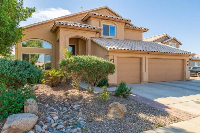 16261 W Maricopa Street, Goodyear, AZ 85338 (MLS #6004527) :: Yost Realty Group at RE/MAX Casa Grande