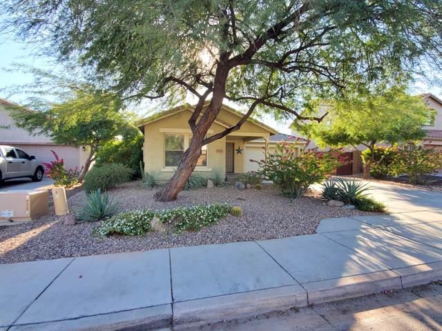 12847 W Desert Mirage Drive, Peoria, AZ 85383 (MLS #6004556) :: Long Realty West Valley