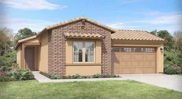 12785 N 145TH Drive, Surprise, AZ 85379 (MLS #6004662) :: The Everest Team at eXp Realty