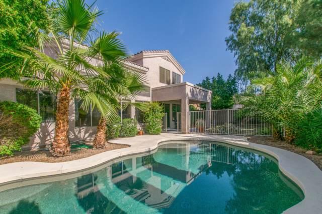 1683 E Spur Street, Gilbert, AZ 85296 (MLS #6004855) :: Revelation Real Estate