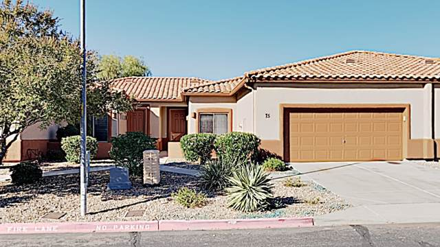 6720 E Encanto Street #75, Mesa, AZ 85205 (MLS #6004870) :: The Laughton Team