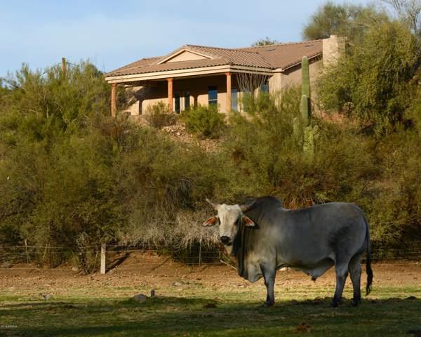 27706 W Mccarroll Road, Morristown, AZ 85342 (MLS #6004886) :: Revelation Real Estate