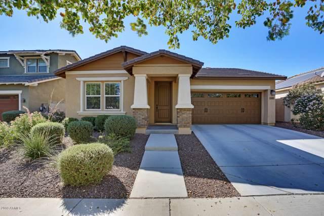 2498 N Delaney Drive, Buckeye, AZ 85396 (MLS #6004949) :: Long Realty West Valley