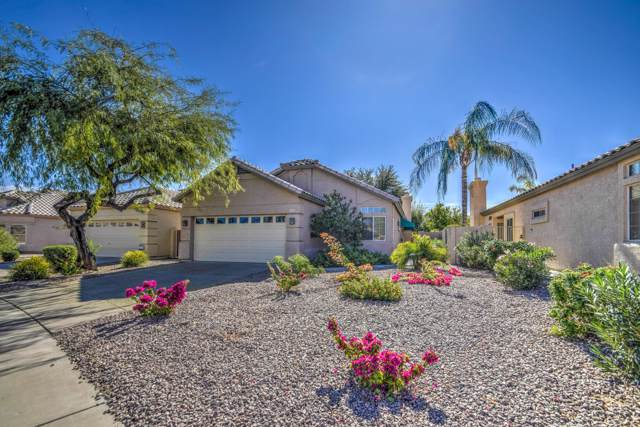 999 E Mission Drive, Tempe, AZ 85283 (MLS #6005038) :: Long Realty West Valley