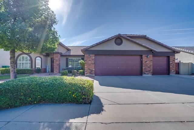 11237 E Renfield Avenue, Mesa, AZ 85212 (MLS #6005059) :: Yost Realty Group at RE/MAX Casa Grande
