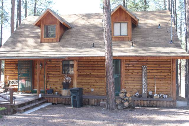 13 County Road #2081, Alpine, AZ 85920 (MLS #6005080) :: Long Realty West Valley