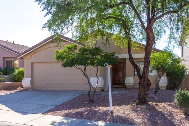 6339 W Saddlehorn Road, Phoenix, AZ 85083 (MLS #6005104) :: Keller Williams Realty Phoenix